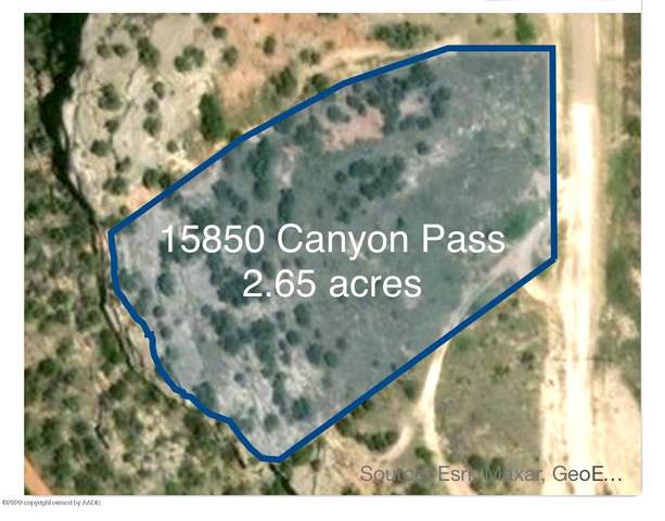 15850 Canyon Pass Rd, Amarillo, TX 79118 (#20-7230) :: RE/MAX Town and Country
