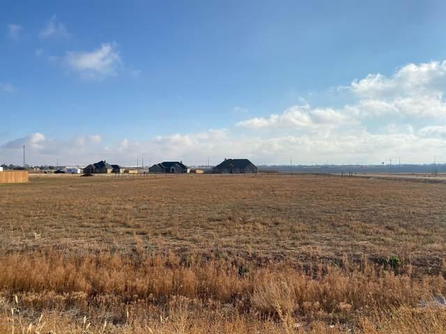 15411 Jack Cook Dr, Amarillo, TX 79119 (#20-7307) :: Keller Williams Realty