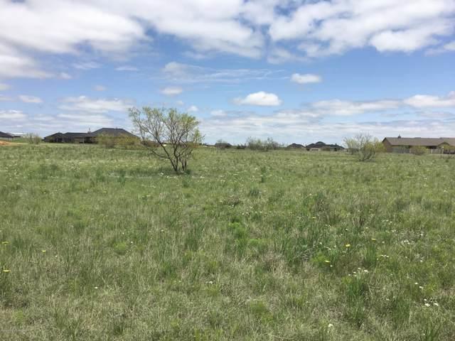13361 Wandering Rd, Amarillo, TX 79118 (#20-740) :: Lyons Realty