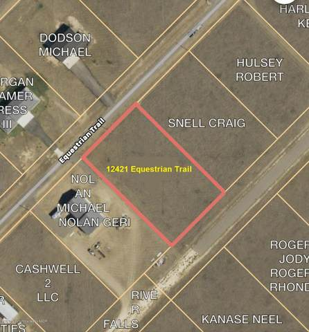 12421 Equestrian Trl, Amarillo, TX 79118 (#20-905) :: Lyons Realty