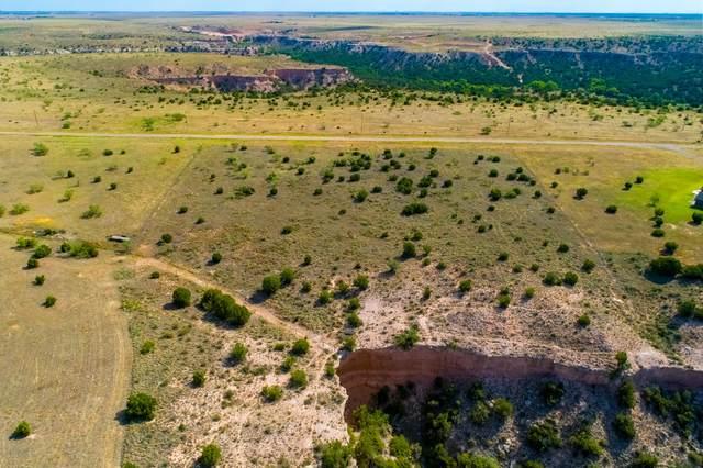 14000 Wilderness Trl, Amarillo, TX 79118 (#21-103) :: Lyons Realty