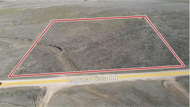 17300 Laguna Vista Rd, Amarillo, TX 79119 (#21-1328) :: Elite Real Estate Group