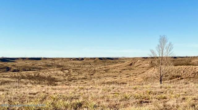 4050 Hill View Rd, Amarillo, TX 79124 (#21-1642) :: RE/MAX Town and Country