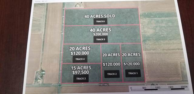 Track 5 Fm 168, Canyon, TX 79015 (#21-1787) :: Elite Real Estate Group