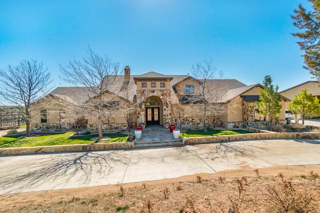104 Overlook Cir, Canyon, TX 79118 (#21-1814) :: Lyons Realty