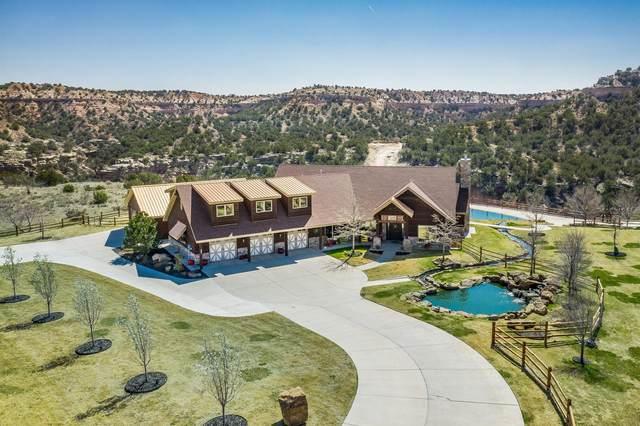 8050 Little Fox Trl, Amarillo, TX 79118 (#21-1937) :: Elite Real Estate Group