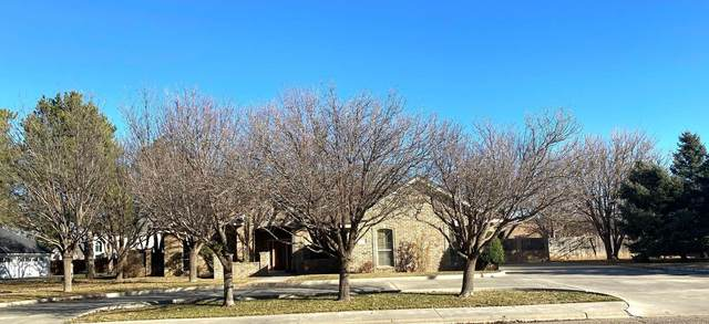 400 Bradley Ln, Dumas, TX 79029 (#21-2106) :: Elite Real Estate Group