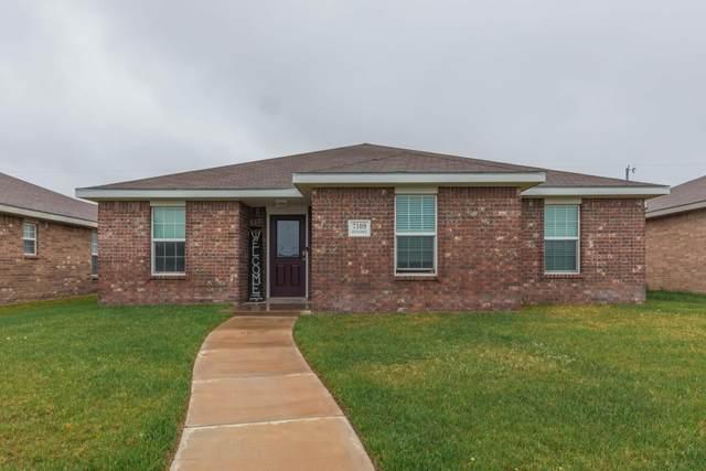 7109 Explorer Trl, Amarillo, TX 79118 (#21-2219) :: Elite Real Estate Group