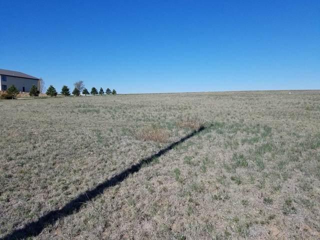 13000 Wild Horse Trl, Amarillo, TX 79118 (#21-2323) :: Elite Real Estate Group