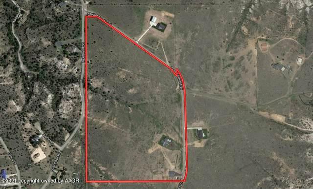214 Aoudad Ranch, Amarillo, TX 79118 (#21-2645) :: Elite Real Estate Group