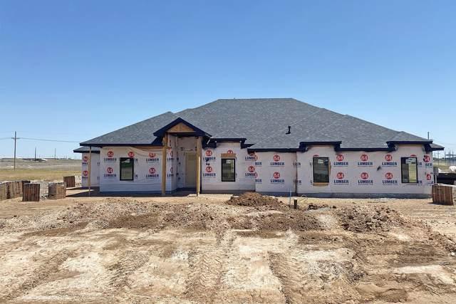15341 Anna Kate Dr, Amarillo, TX 79119 (#21-2648) :: Elite Real Estate Group