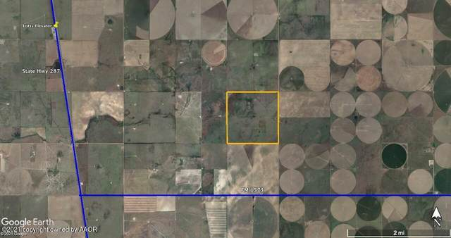 Address Not Published, Stratford, TX 79084 (#21-2717) :: Meraki Real Estate Group