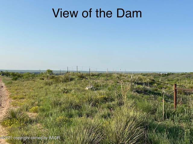 0 Pampa, Fritch, TX 79036 (#21-3610) :: Live Simply Real Estate Group
