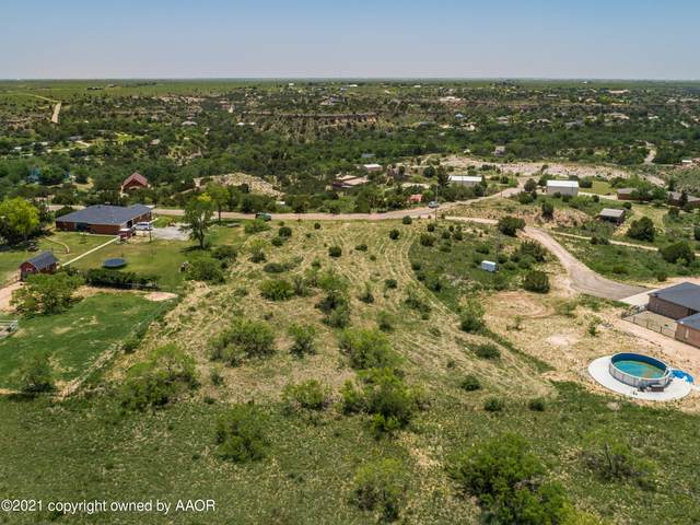 0 Wild Plum Dr, Amarillo, TX 79118 (#21-3663) :: Lyons Realty