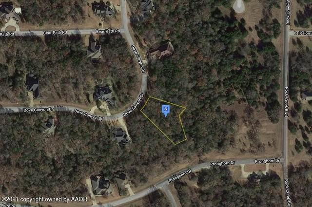 0000 Dove Canyon Dr, Amarillo, TX 76245 (#21-3738) :: Live Simply Real Estate Group