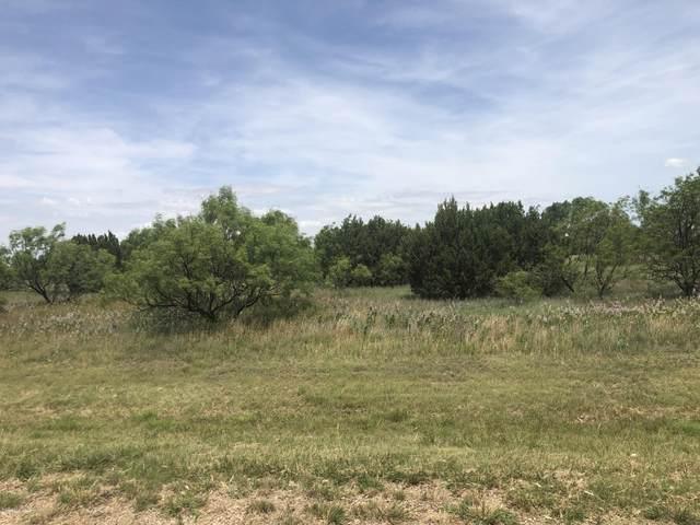 208 Sandy Trl, Canyon, TX 79015 (#21-3746) :: Meraki Real Estate Group