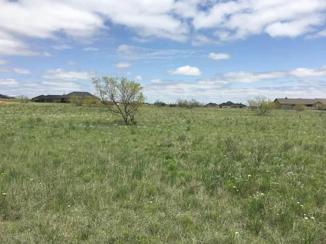 13361 Wandering Rd, Amarillo, TX 79118 (#21-38) :: Lyons Realty
