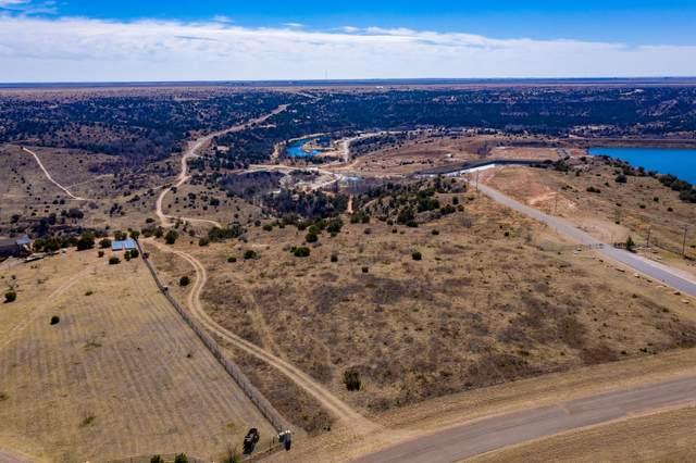 6500 White Bluff Trl, Amarillo, TX 79118 (#21-4341) :: Keller Williams Realty