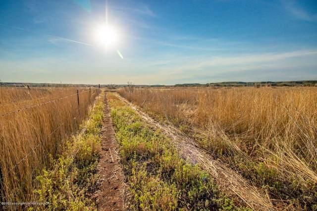 25001 Knob Hill, Amarillo, TX 79010 (#21-4814) :: Lyons Realty