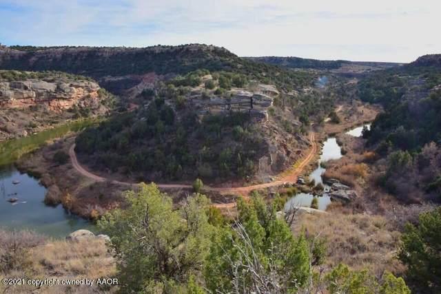 15700 Canyon Pass Rd, Amarillo, TX 79118 (#21-539) :: Lyons Realty