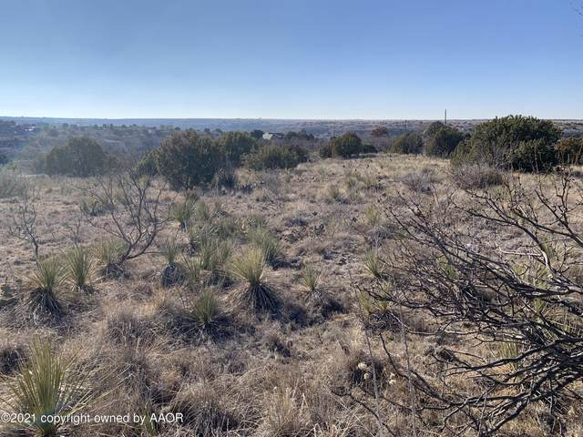 0 Roberts Dr, Amarillo, TX 79118 (#21-559) :: Live Simply Real Estate Group