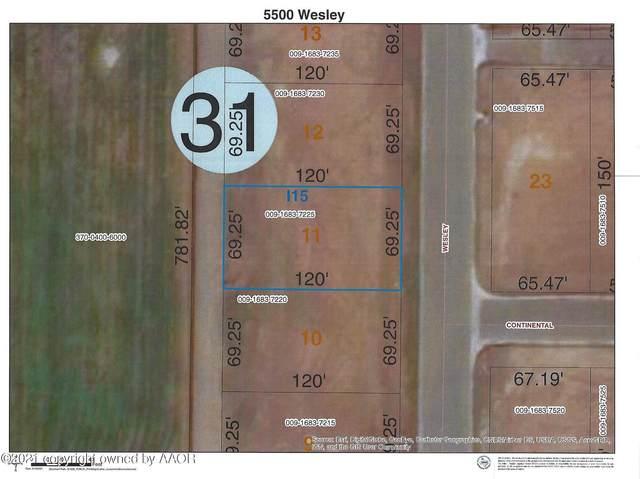 5500 Wesley Rd, Amarillo, TX 79119 (#21-6106) :: Keller Williams Realty