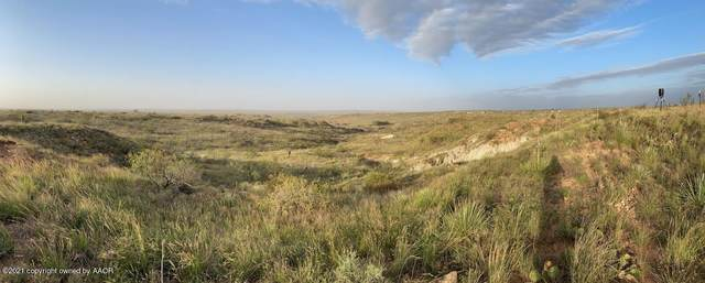 0 Murray Loop, Valle De Oro, TX 79010 (#21-6201) :: RE/MAX Town and Country