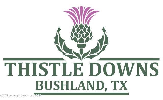 0 Bushland Rd, Amarillo, TX 79119 (#21-6481) :: Elite Real Estate Group