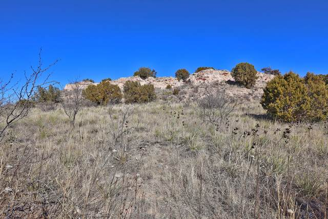 0 Fox Ridge Rd, Amarillo, TX 79118 (#21-868) :: Live Simply Real Estate Group
