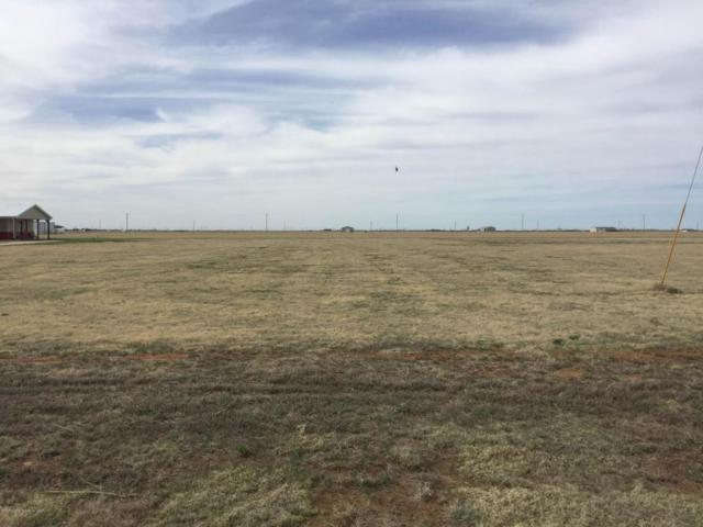 12860 Wandering Rd, Amarillo, TX 79118 (#16-97628) :: Keller Williams Realty