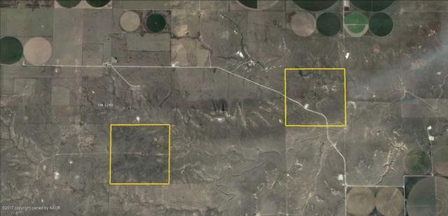 Sherman County, Stratford, TX 79084 (#17-104855) :: Elite Real Estate Group
