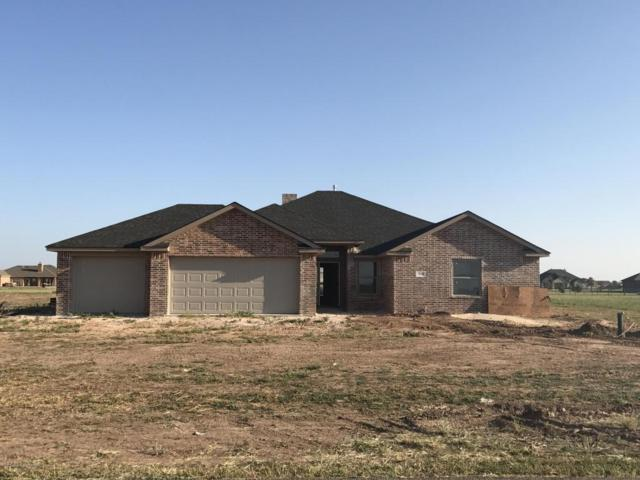18800 19th St, Bushland, TX 79124 (#17-108311) :: Keller Williams Realty