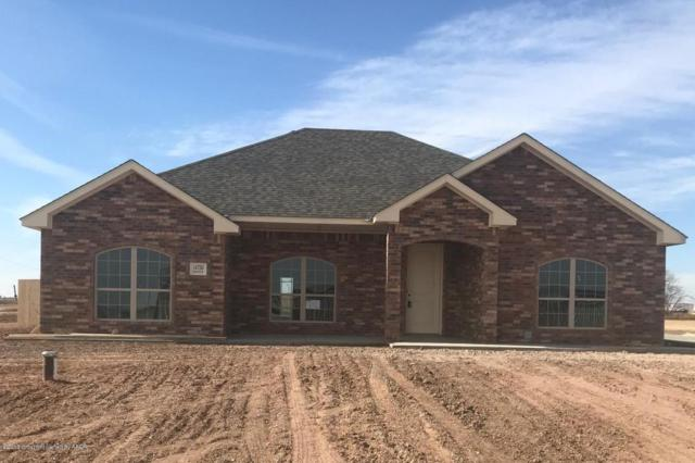 14750 Maple Dr, Amarillo, TX 79119 (#18-111983) :: Edge Realty
