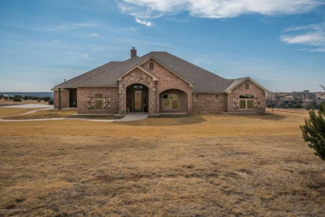 14100 Wilderness Trl, Amarillo, TX 79118 (#18-112387) :: Elite Real Estate Group