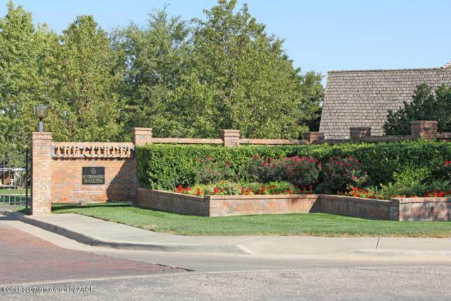 2 Citadel Dr, Amarillo, TX 79124 (#18-112894) :: Lyons Realty