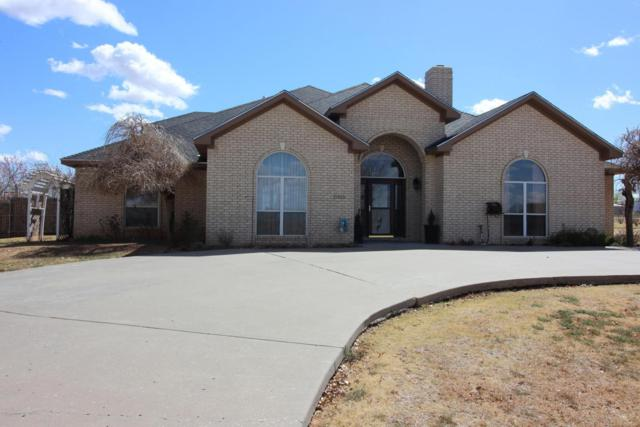 11315 Collin Wade Rd, Amarillo, TX 79124 (#18-113604) :: Big Texas Real Estate Group