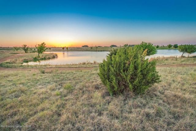 6901 Blue Sky Dr, Amarillo, TX 79118 (#18-114664) :: Big Texas Real Estate Group