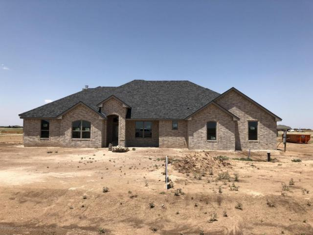 20480 Firefly Ln, Canyon, TX 79015 (#18-115508) :: Elite Real Estate Group