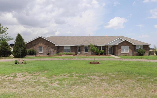 19300 Wind River Dr, Amarillo, TX 79124 (#18-116012) :: Elite Real Estate Group