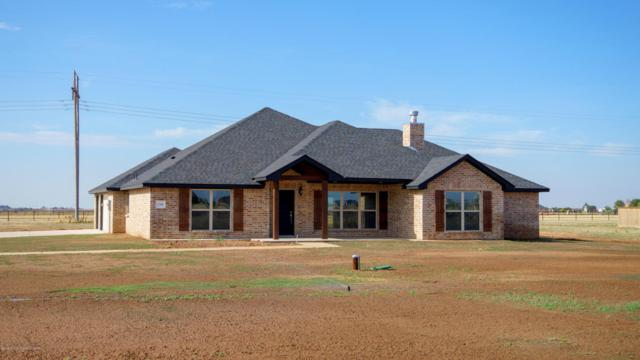 17850 Coyote Spgs E, Amarillo, TX 79119 (#18-116372) :: Edge Realty