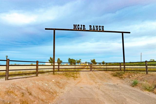 U.S. Highway 83, Paducah, TX 79248 (#18-116386) :: Lyons Realty