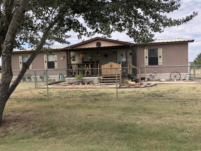 206 Harbor Dr, Fritch, TX 79036 (#18-116900) :: Elite Real Estate Group