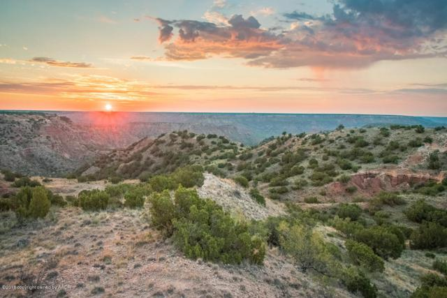 Spanish Skirts Tract 2, Canyon, TX 79015 (#18-117325) :: Gillispie Land Group