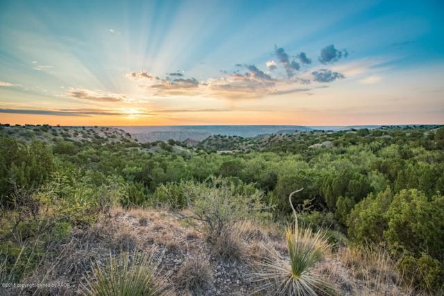Spanish Skirts Tract 3, Canyon, TX 79015 (#18-117327) :: Big Texas Real Estate Group