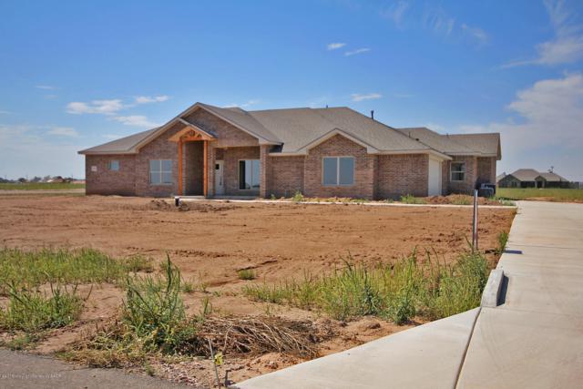 2450 Ginger Dr, Bushland, TX 79012 (#18-118127) :: Lyons Realty