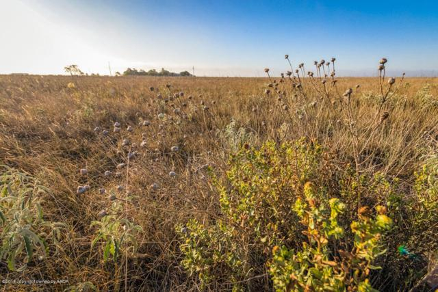 Fm 1705 40 Acres, Happy, TX 79042 (#18-118131) :: Gillispie Land Group
