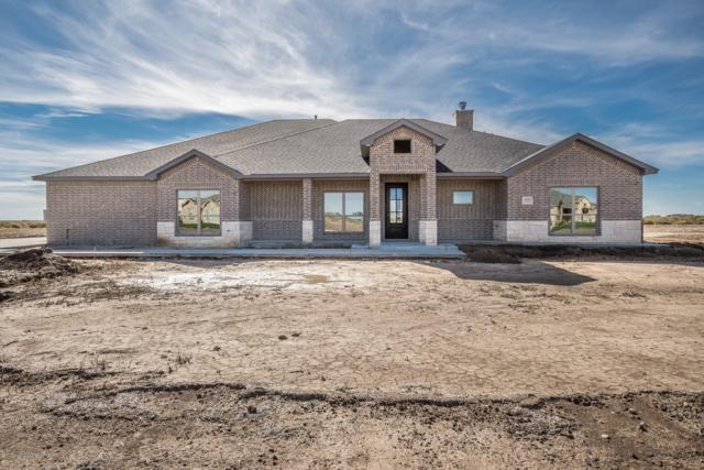 18501 Bradley Ln, Bushland, TX 79124 (#18-119085) :: Elite Real Estate Group