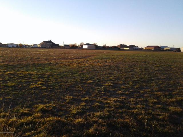 9500 Blenheim Dr, Amarillo, TX 79119 (#18-119284) :: Big Texas Real Estate Group