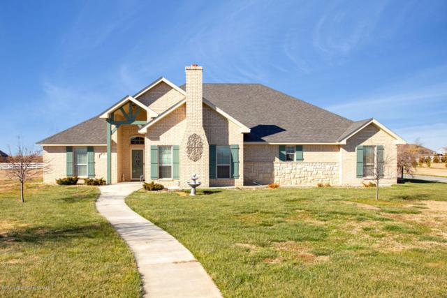 9150 Bridle Trails Dr, Amarillo, TX 79119 (#18-119494) :: Lyons Realty