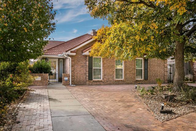 7619 Stuyvesant Ave, Amarillo, TX 79121 (#18-119644) :: Lyons Realty
